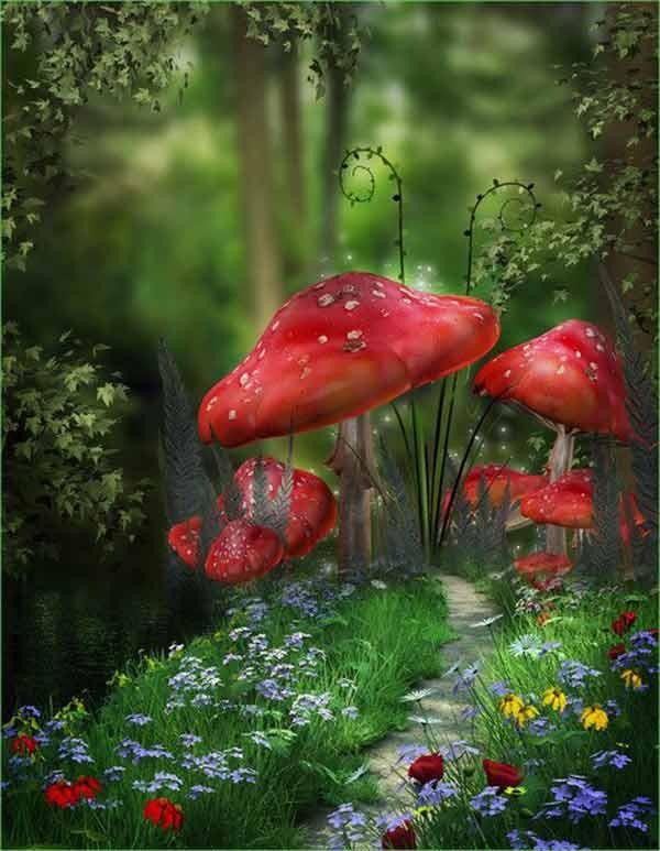 enchanted mushroom wallpaper - photo #12