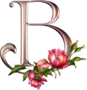 Bon Mardi 8437378a